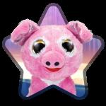 NEW! Piggy